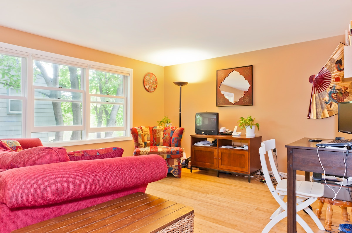 Room in cozy condo outside Boston