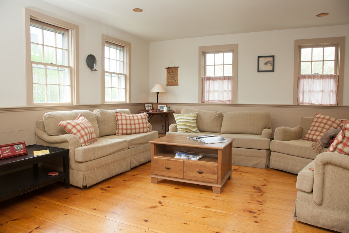 Comfortable living room with pull out sofas