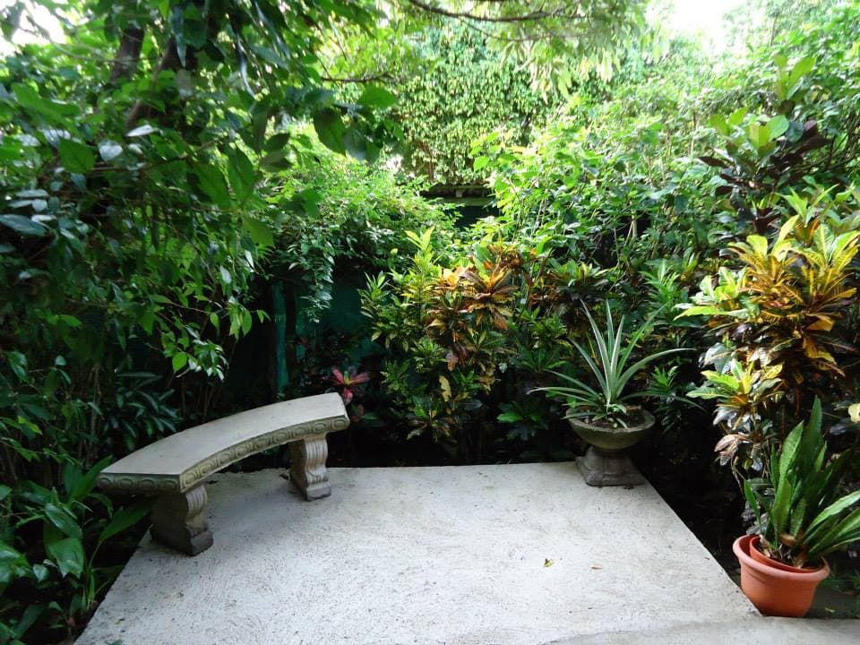 Private Guest Porch  Windsurf, Kite, Restaurants, Gift Shops, Volcano Arenal, Hanging Bridges, Wild LIfe Rescue zoo, Bird Watching