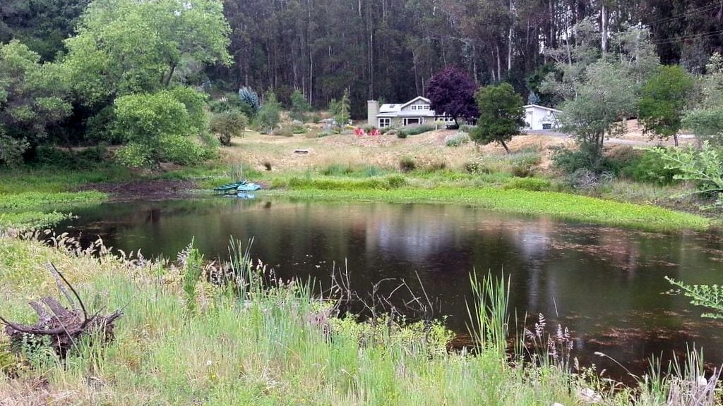 View of property from far side of pond