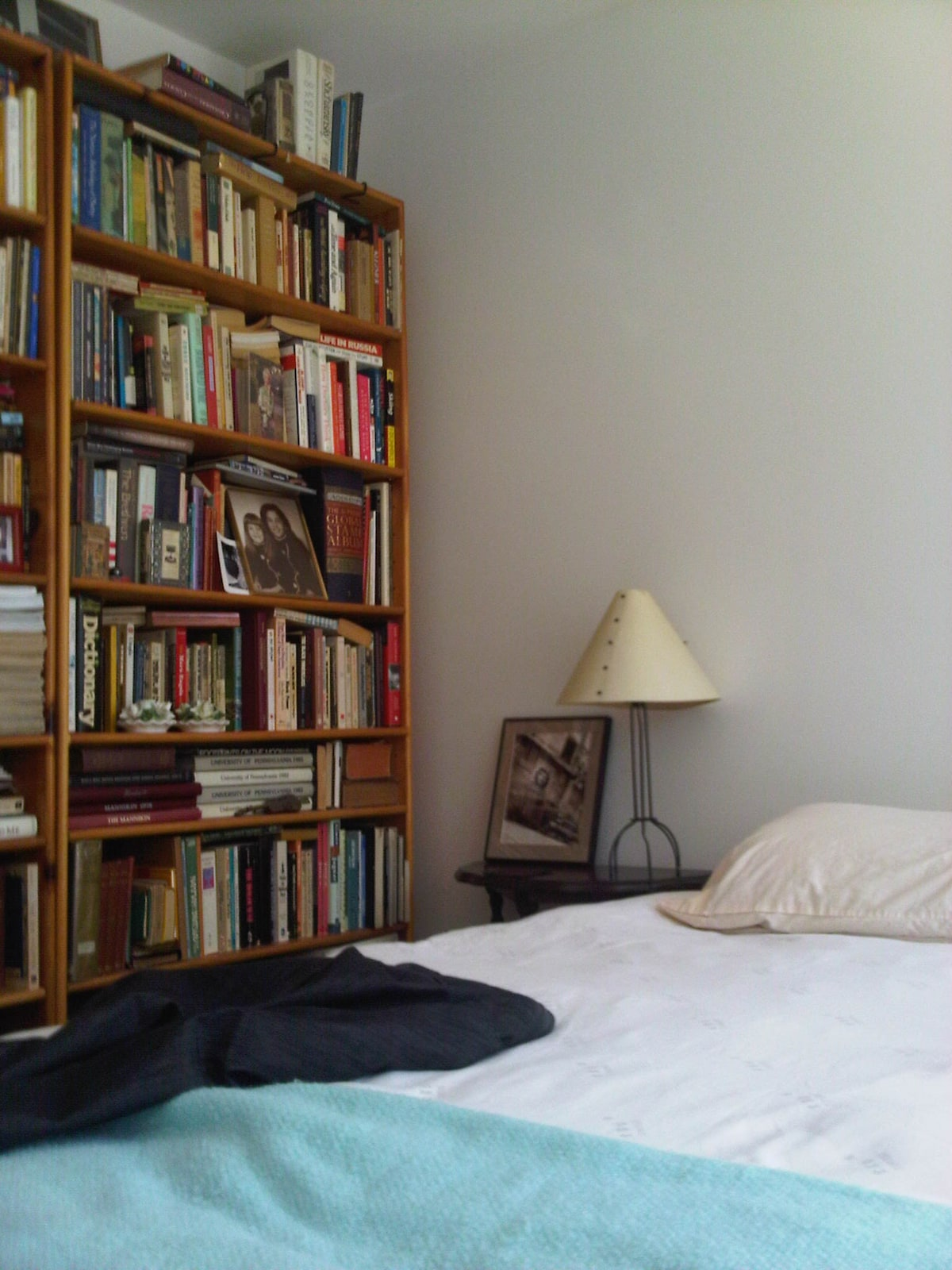 downstairs bedroom & bookcases