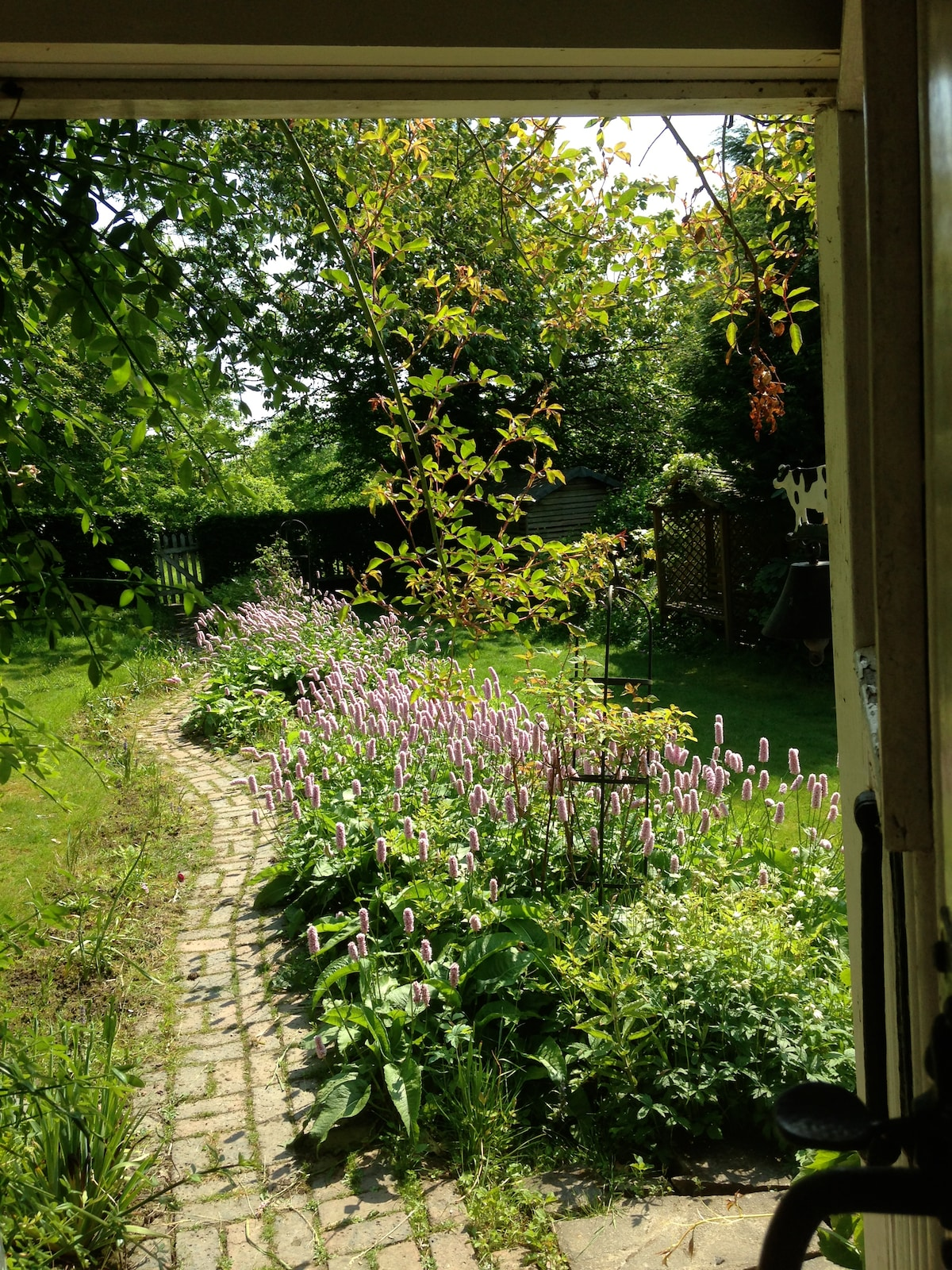 View of the garden with the old back door open