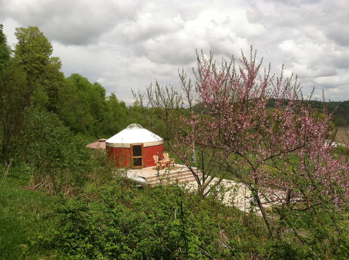 Yurt Rental on 80 private acres