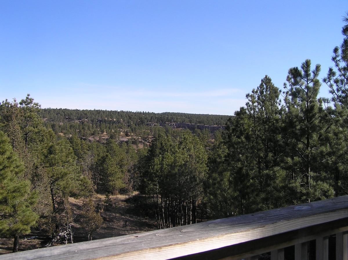 Dobber's Ridge Black Hills Cabin