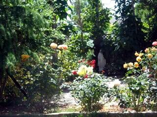 Rose Garden - beautiful spot for meditation