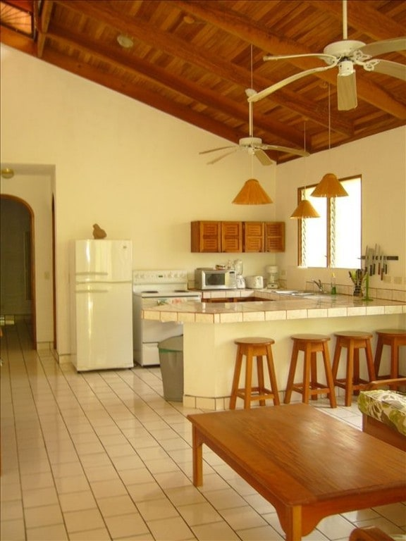 Kitchen Area Complete with Utensils & Appliances & 20 ft Teak Ceilings
