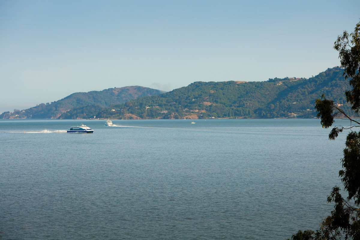 Take the Golden Gate Ferry to and from San Francisco or just sit back and watch it sail past.