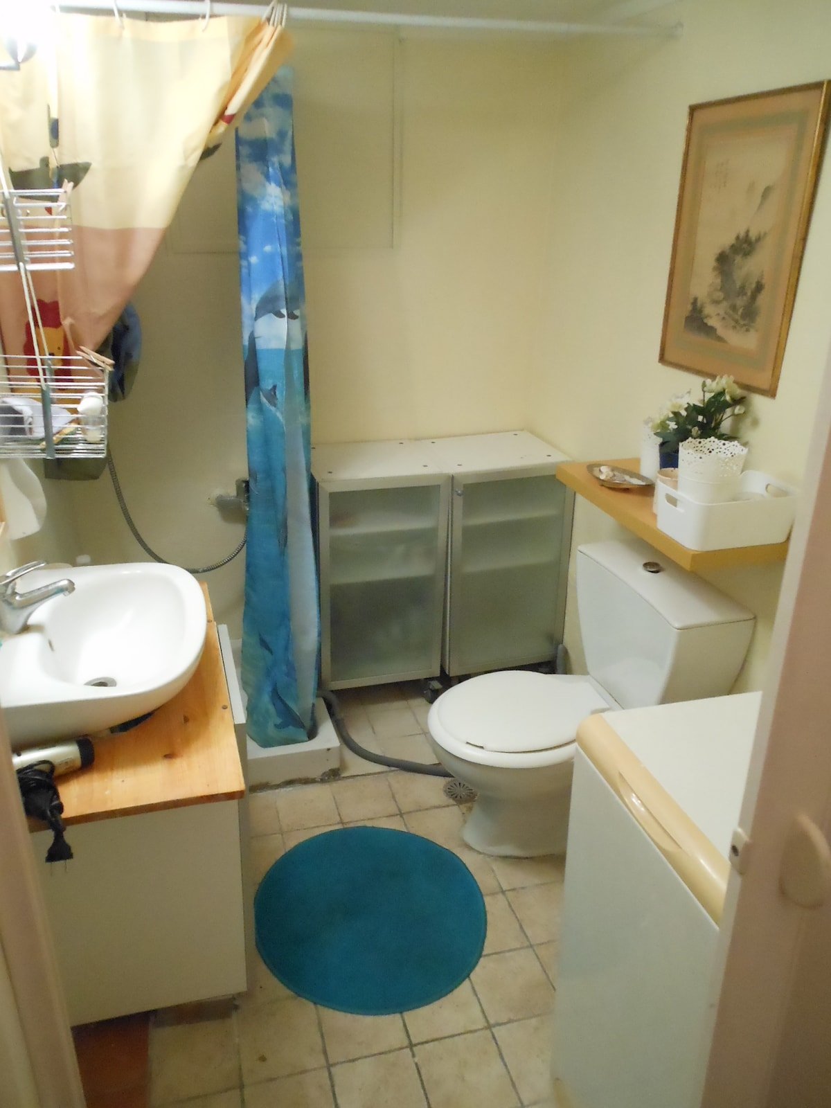 The bathroom. Renovated and functional and ample storage spaces.