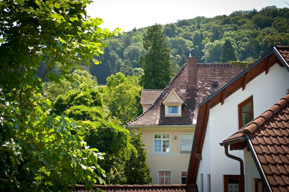 Blick vom Küchenfenster auf den Schloßberg