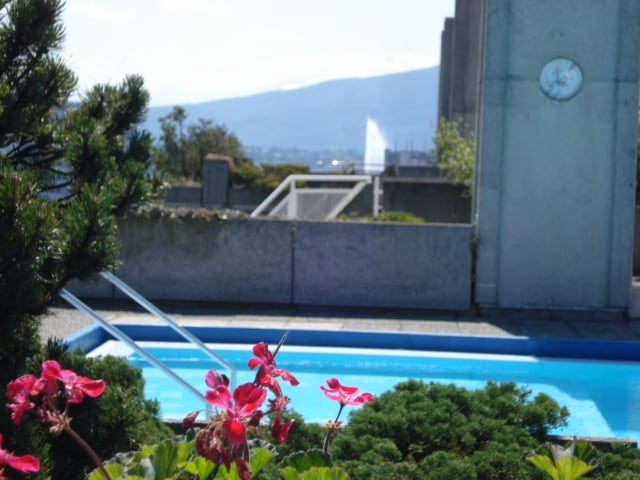 Swimming pool on roof and Geneva fountain in the background