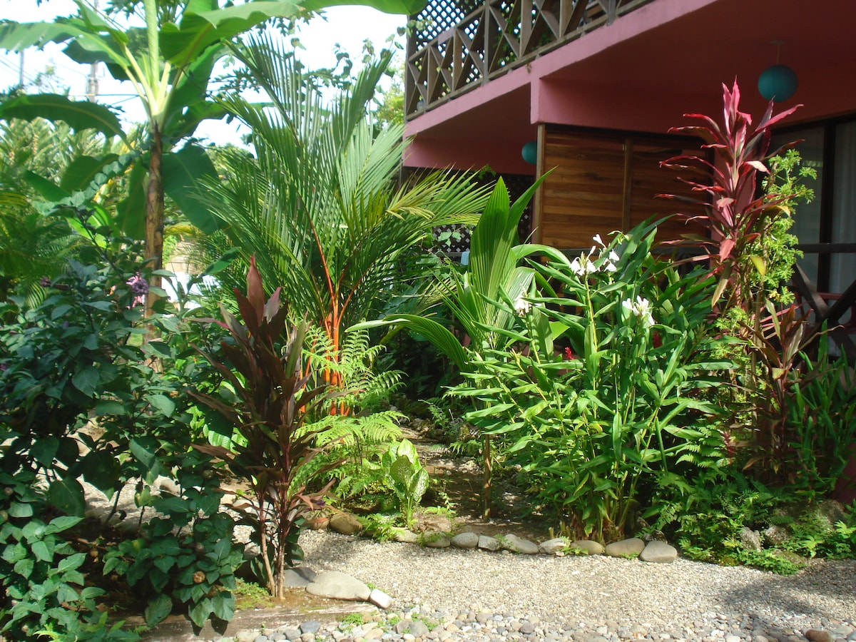 Coconut Love beach House Tropical Garden view from Balcony's