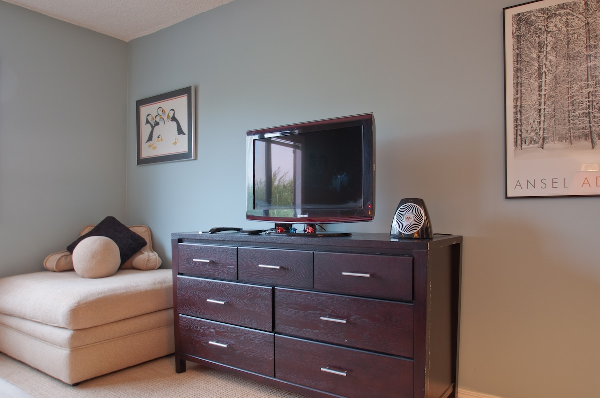 TV, dresser and couch in Bedroom