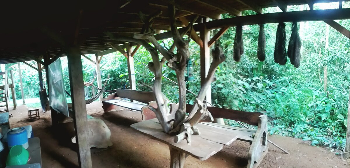 View of hand made benches, table, and oropendula nest decorations.