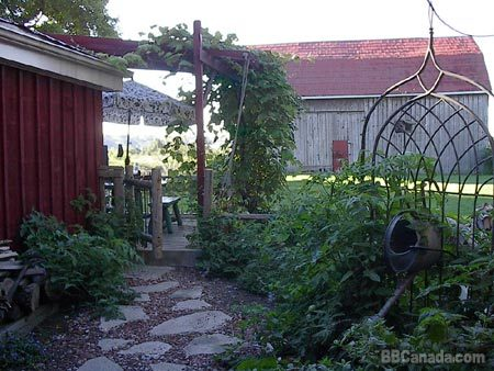 Herb garden and barn.