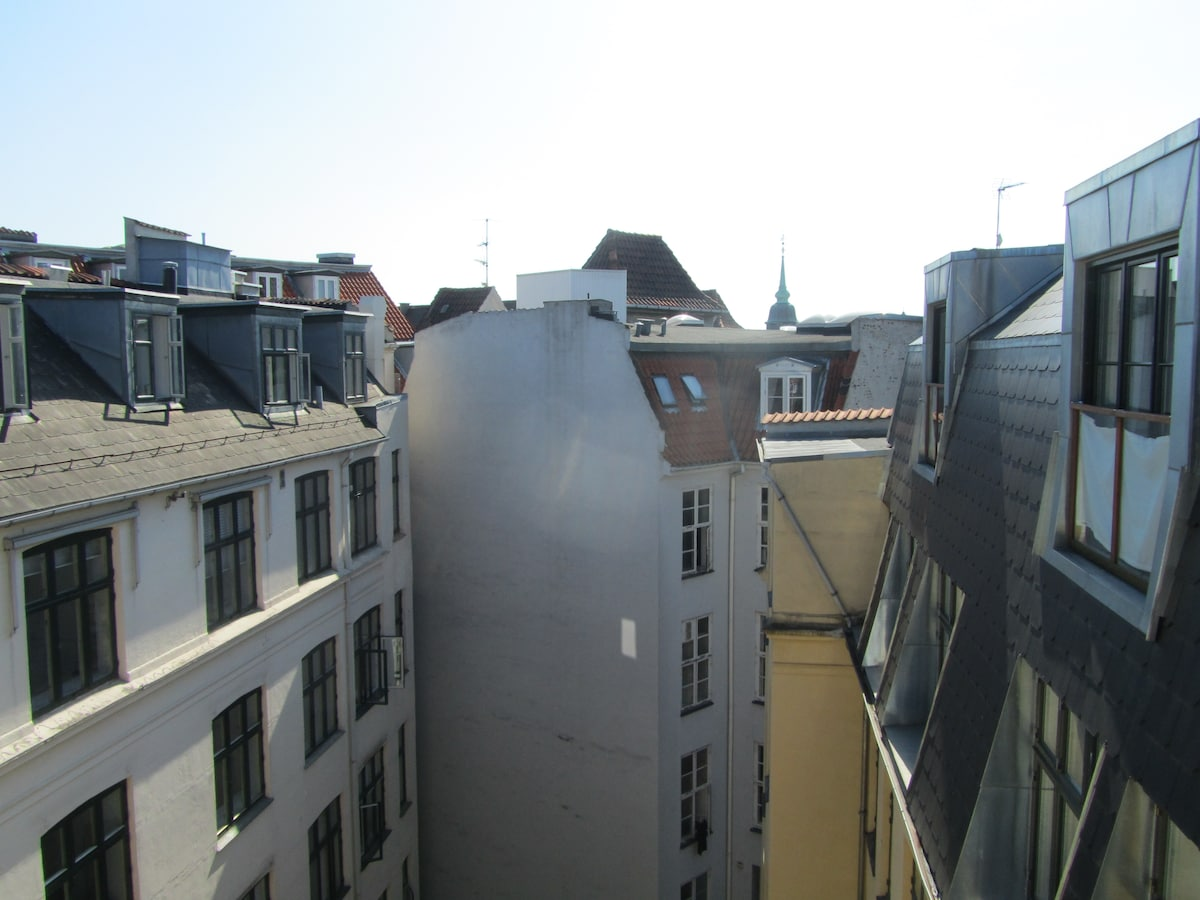 1 room in the penthouse apartment