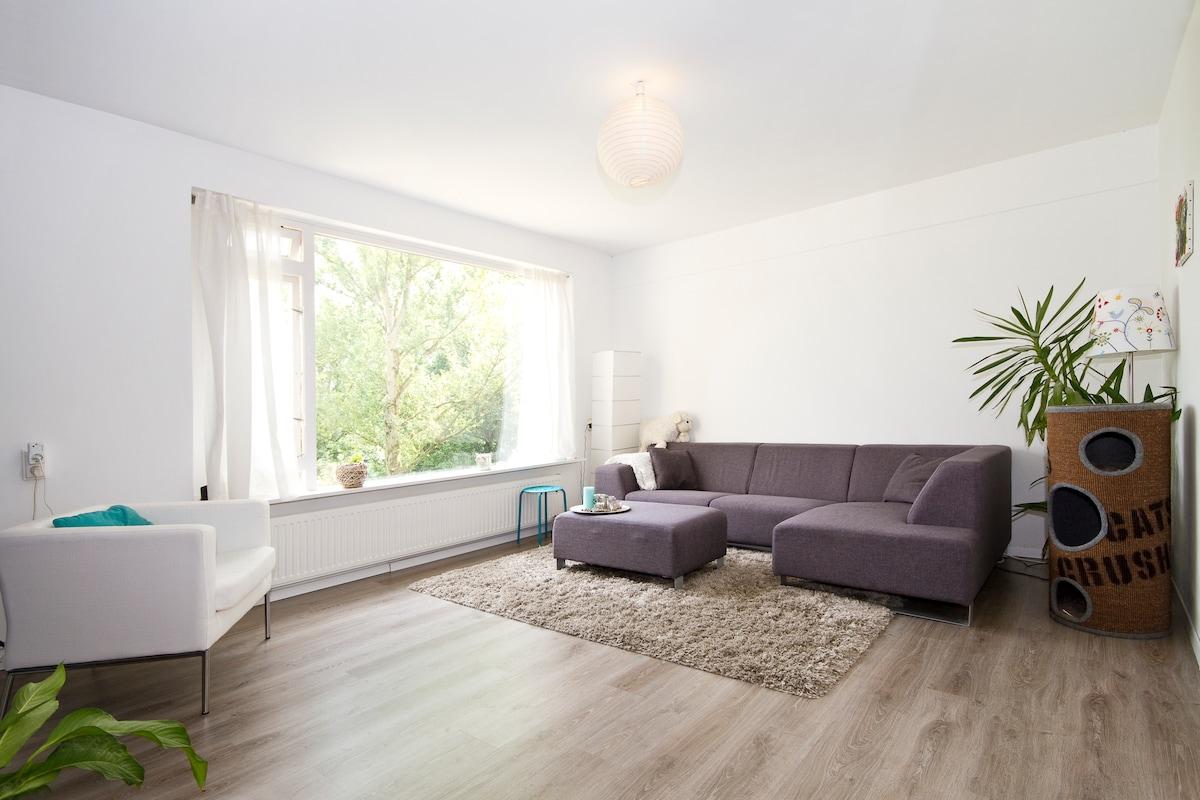 the same living room, different angle