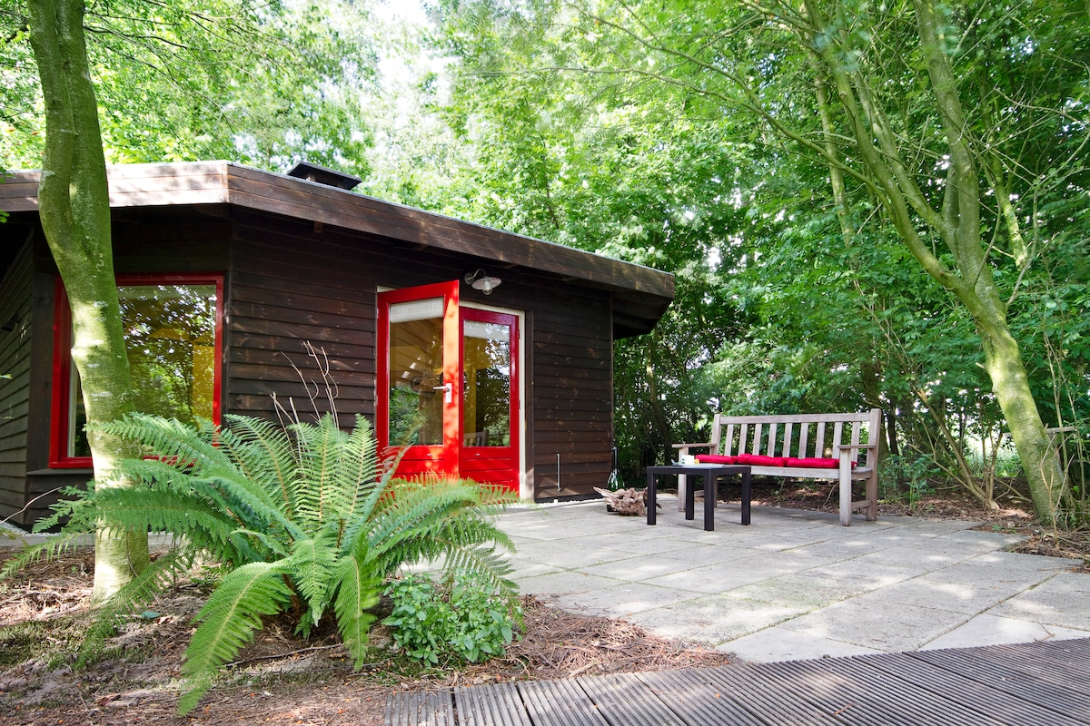 Forest house in center of Holland