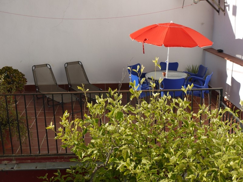 Sunny Terrace with sunbeds and dinner table...and of course the Lemon Tree :)
