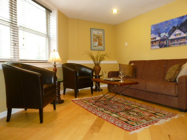 Newly furnished, well lit living room with Convert-a-Couch for extra guests.