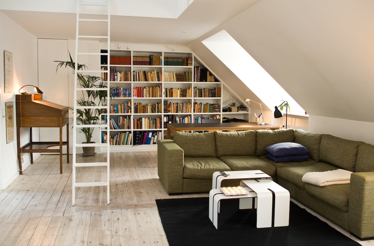 Penthouse in central CPH