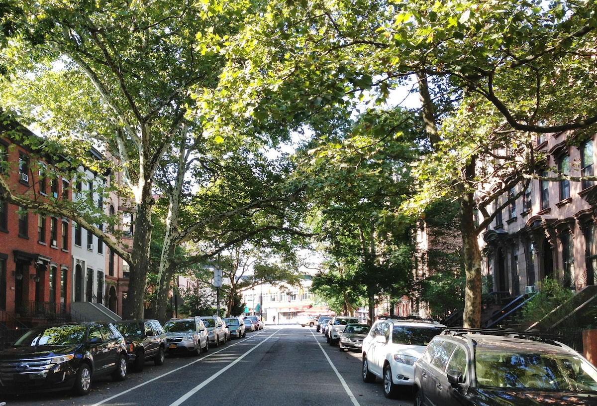 Prospect Heights Brooklyn streetscape