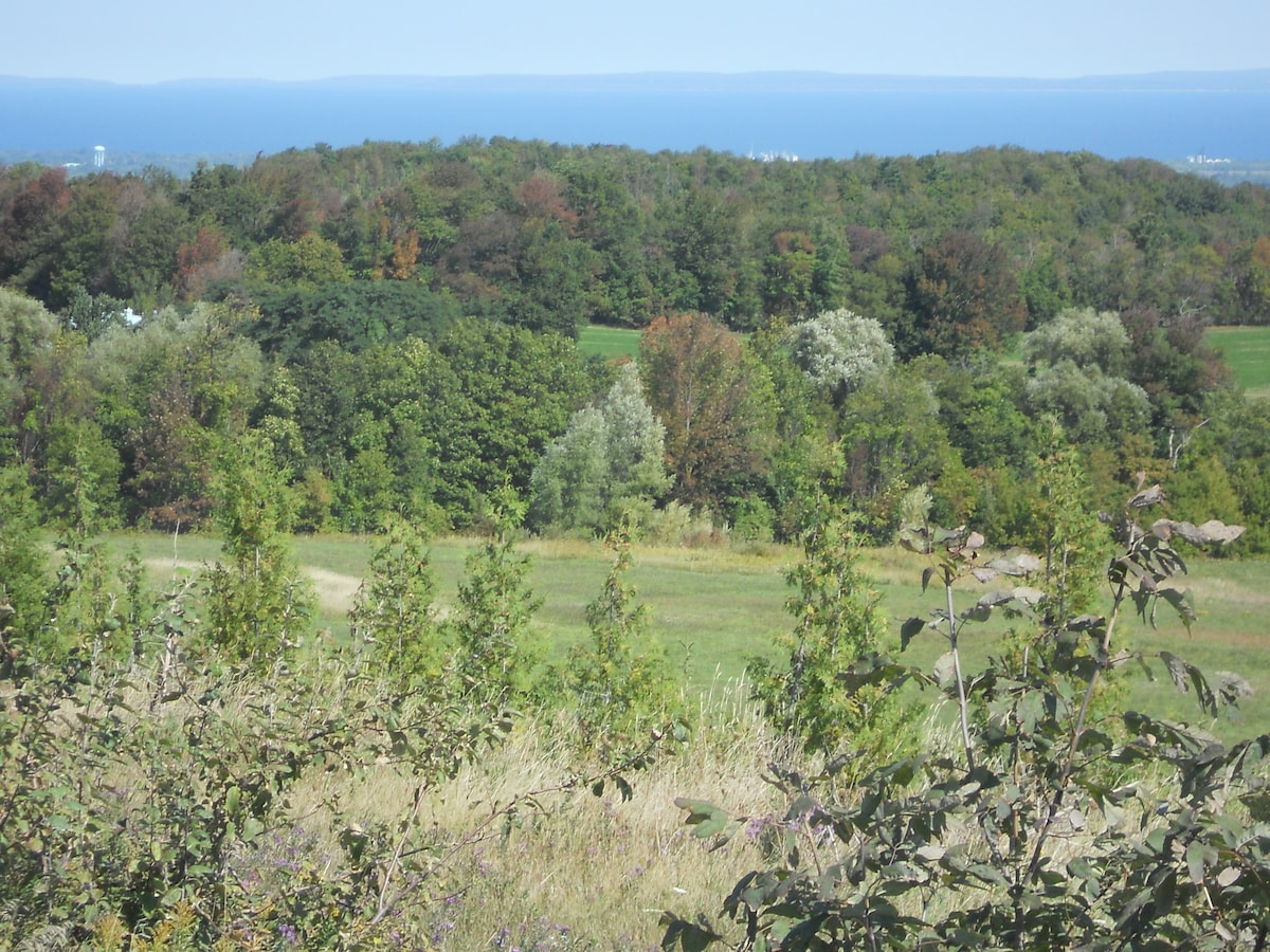 Picturesque area with lots of hiking and biking trails and great ski resorts and golf courses