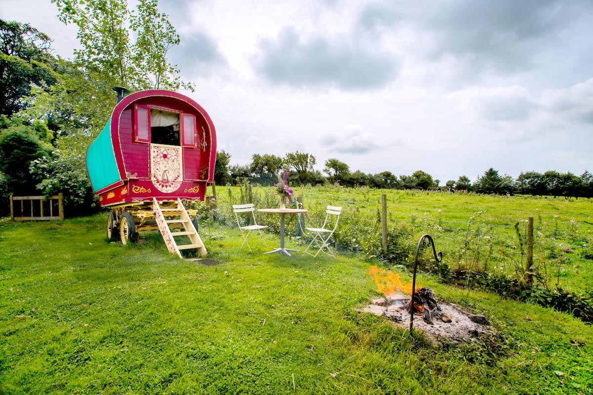 Bow Top Elle Gypsy Wagon Cornwall