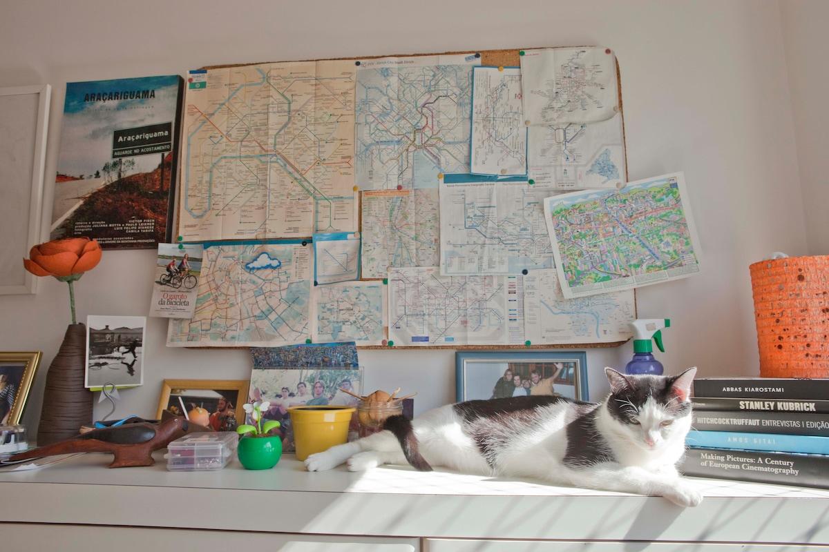 What we love! Cats, metro lines, Bresson, Kubrick, Hitchcock