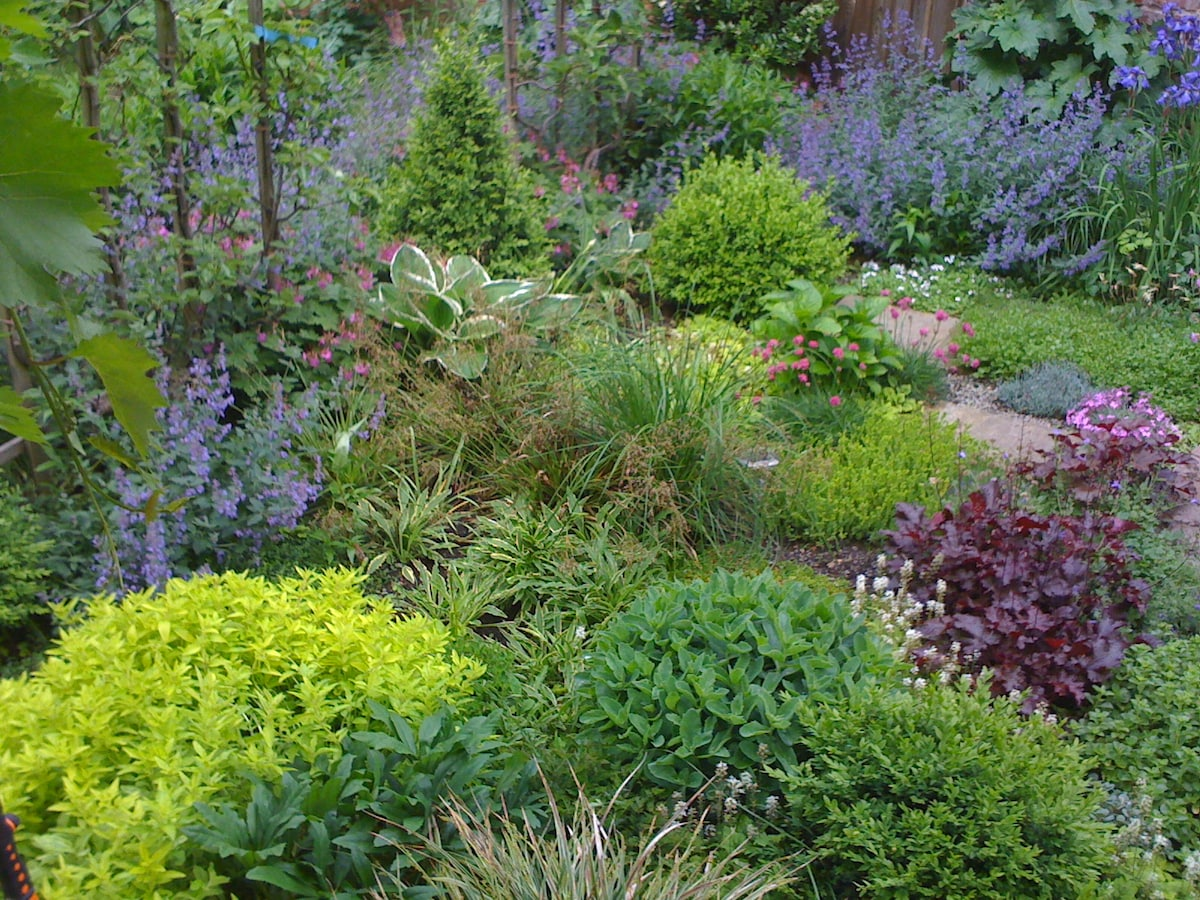 Ein Garteneindruck von 2013