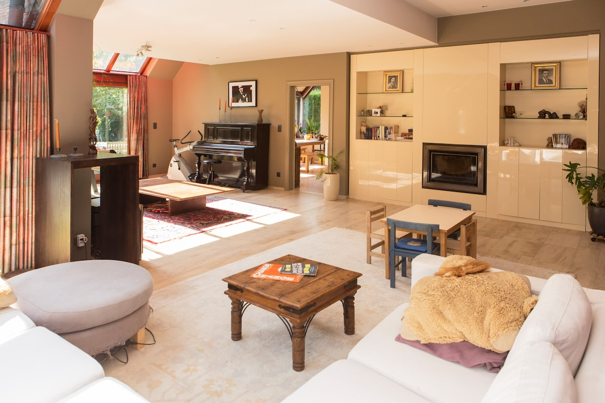 Nice villa with big garden and wood