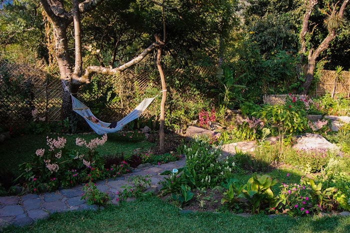Relax in the hammock and enjoy the many birds that visit the garden