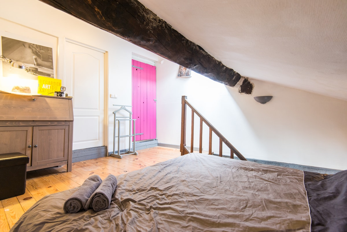 Duplex 2 pers. in Annecy Old Town!