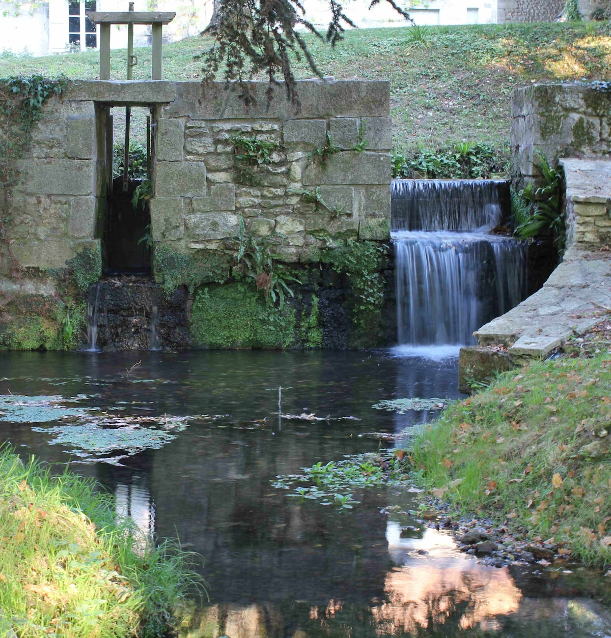 The leat/mill race