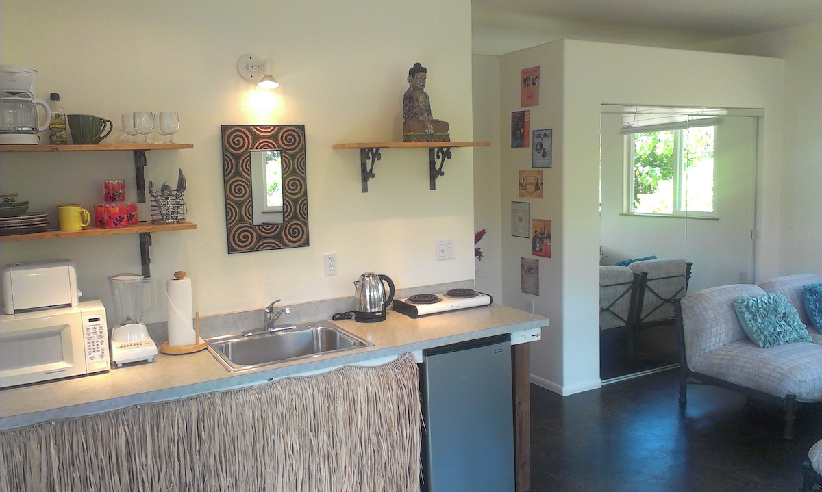 Kitchen - everything you need when you feel like dining in rather than going out.  Electric grill & toaster oven in closet