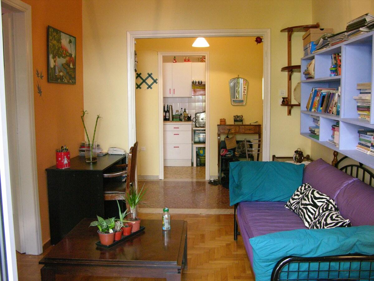 Beautiful full furnished apartment