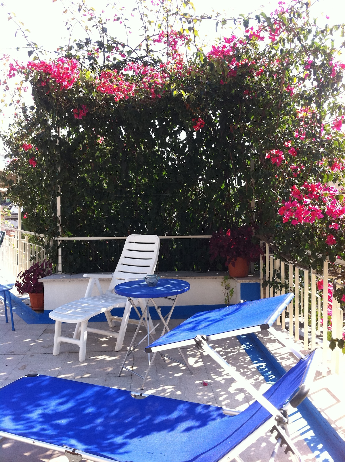 Terrace corner with flowers arbour