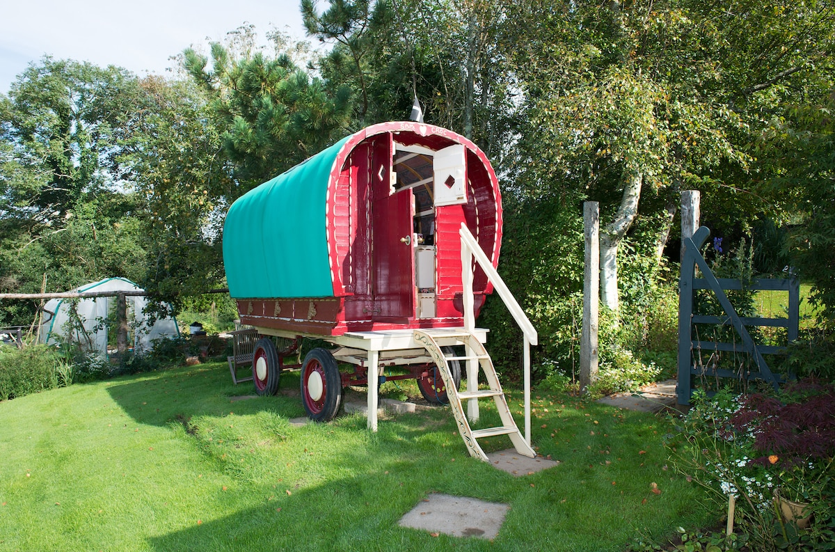 Romany Caravan at Bush Meadows