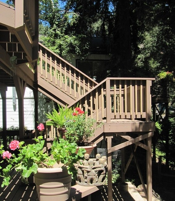 Escape to Paradise in the Redwoods!