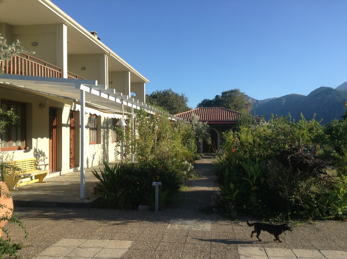 Your first view of the residence as you enter ( Dog Orestis included)