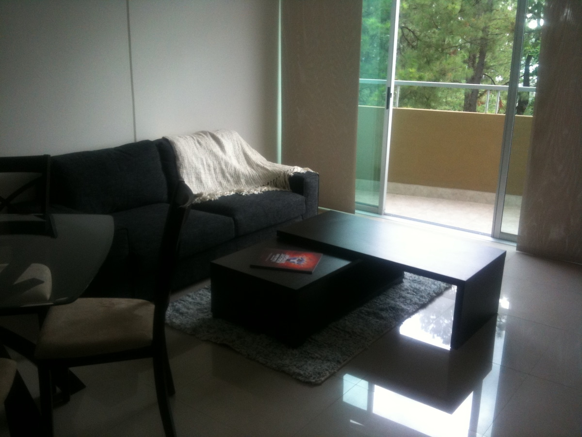 Luxury Condo 10 min to San Jose