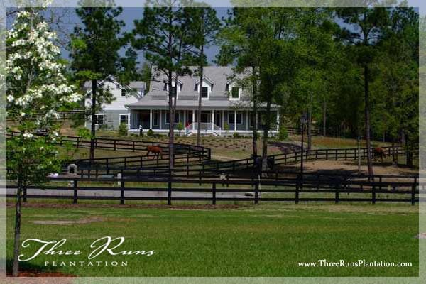Private room-Aiken horse property