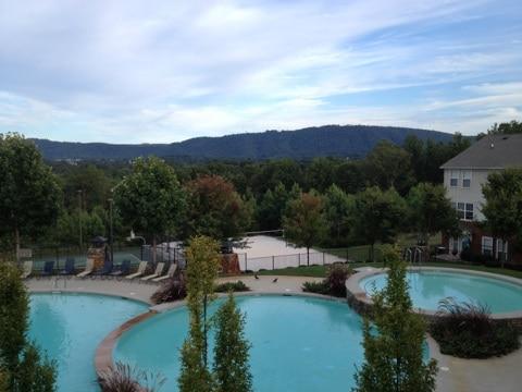 Monticello Views
