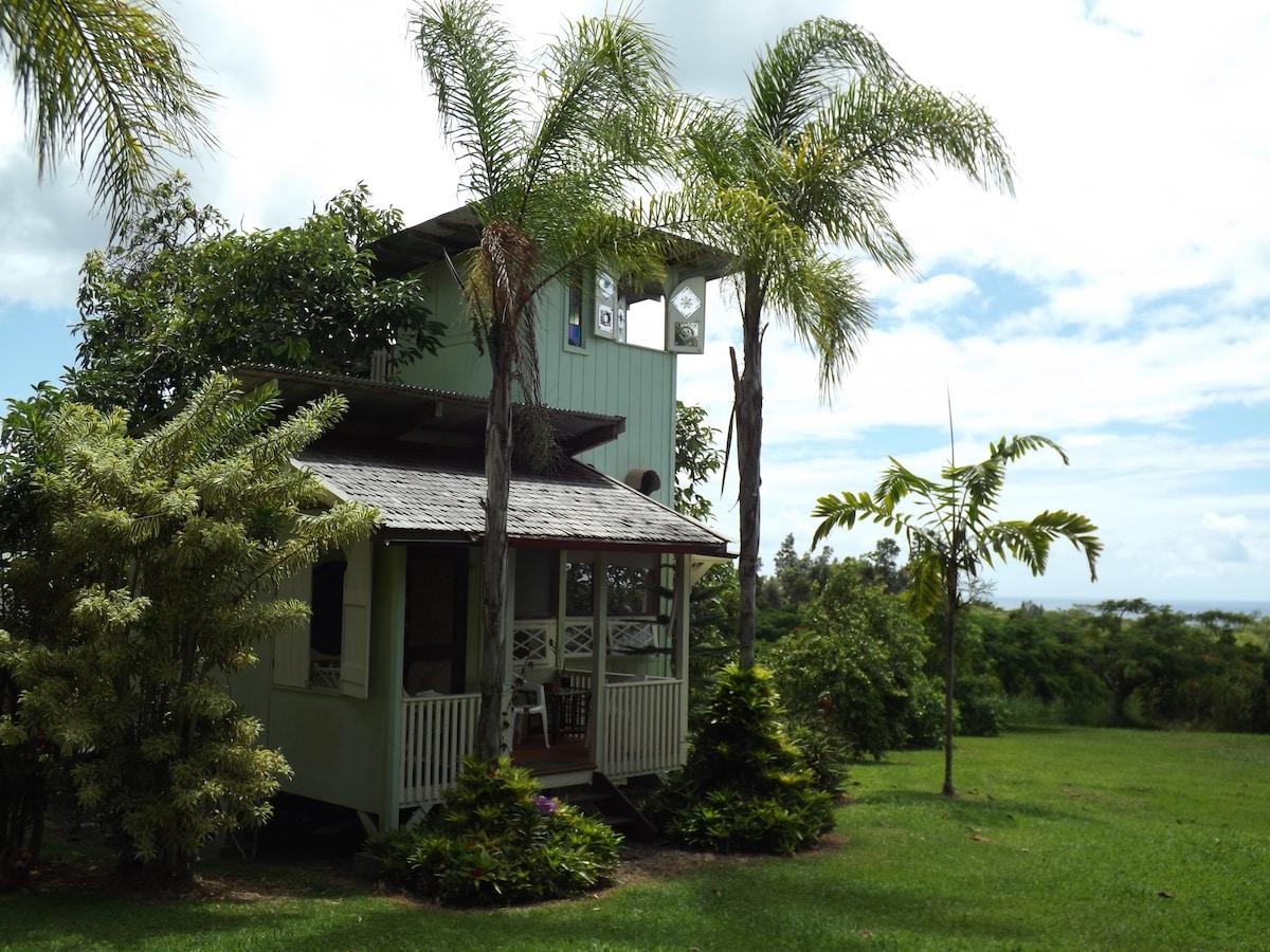 Avocado Tree-House near Pahoa