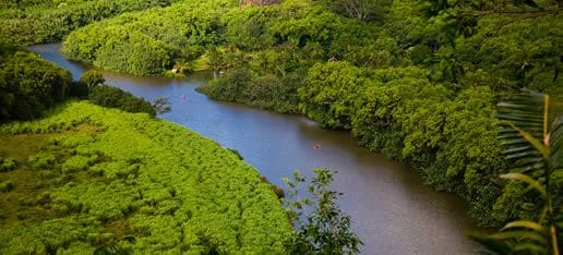 The view of the Wailua River over looking the ridge from Kuamoo Rd.
