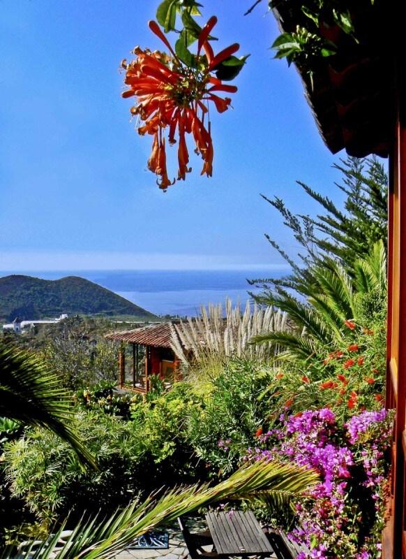 Seaview chalet in tropical garden
