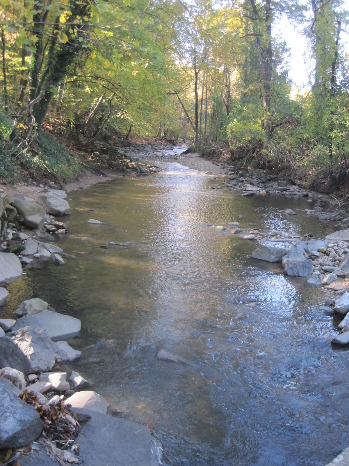 the beautiful creek that runs through our park