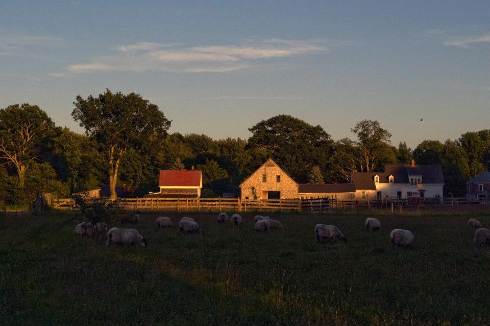 Sunset on Lily Brook Farm