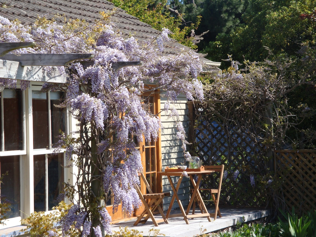 Springtime - eat out on the decking under the wisteria.