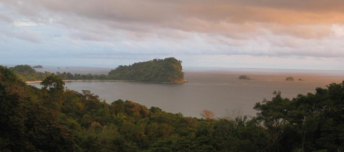 Manuel Antonio National Park and beaches  (5 minutes away)
