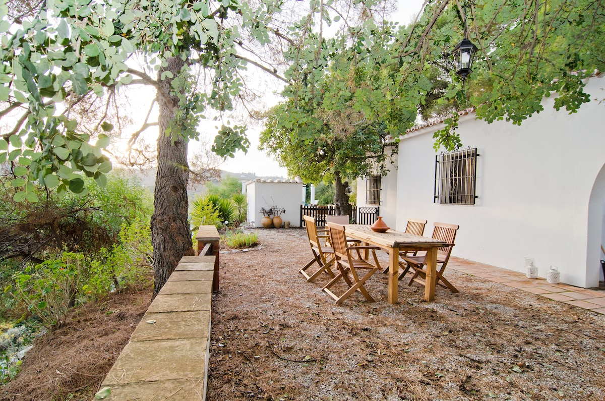 front terrace under the Carob tree